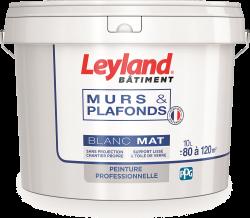 Leyland murs & plafonds Blanc Mat